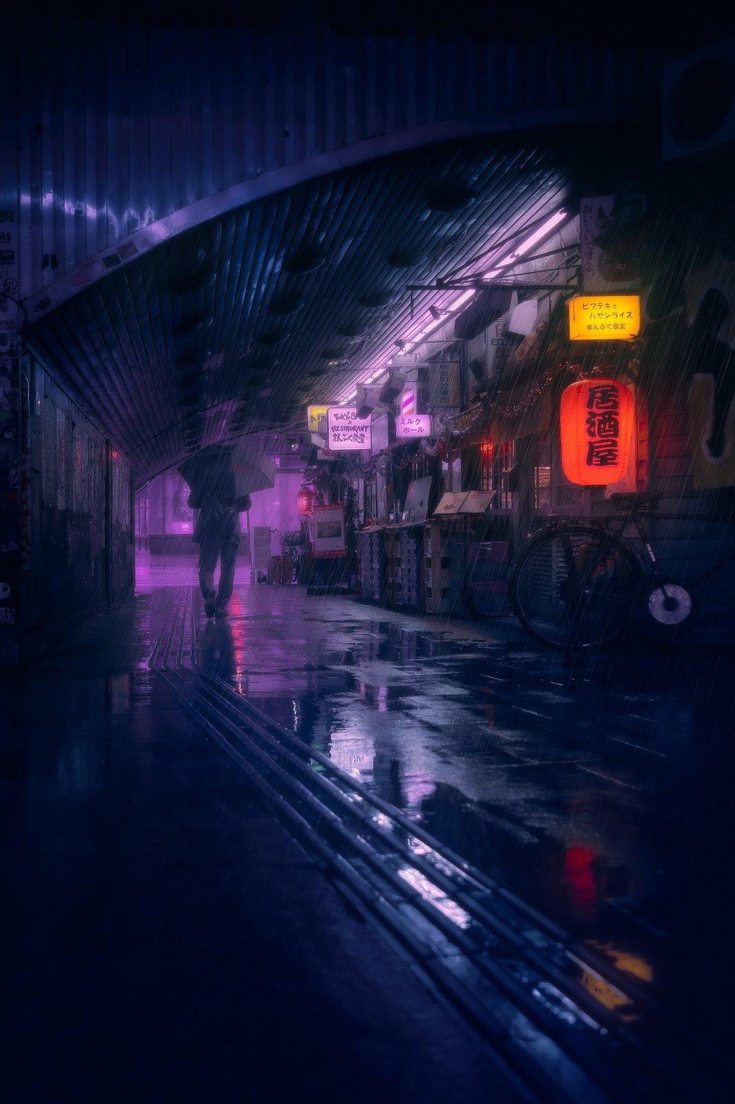 Tokyo Blue Rain VIII